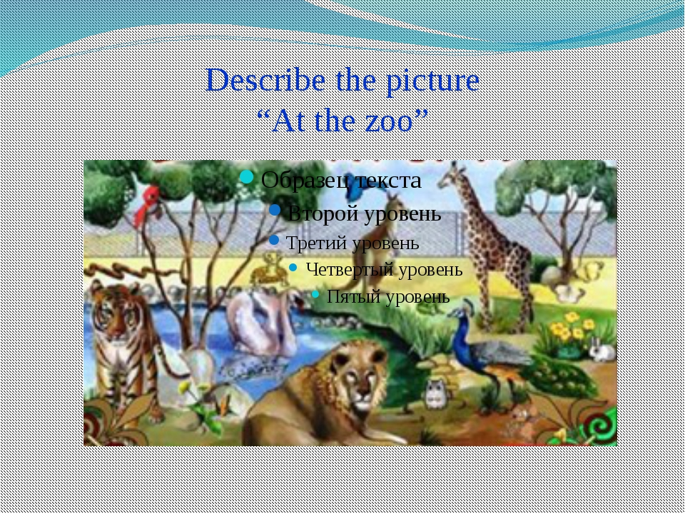 "Describe the picture ""At the zoo"""