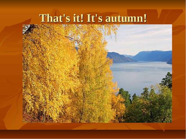 That's it! It's autumn!