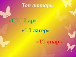 Топ аттары «Сұңқар» «Құлагер» «Тұлпар»