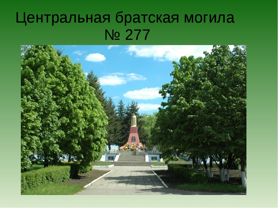 Центральная братская могила № 277