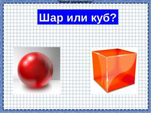 """Живой арифмометр"" Шар или куб?"