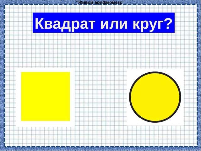 """""""Живой арифмометр"""" Квадрат или круг?"""