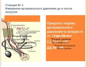 Станция № 3 Измерение артериального давления до и после нагрузки Пределы норм