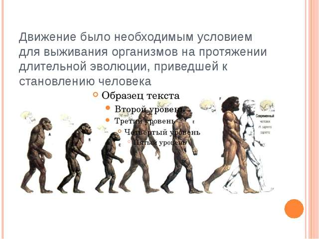 Движение было необходимым условием для выживания организмов на протяжении дли...