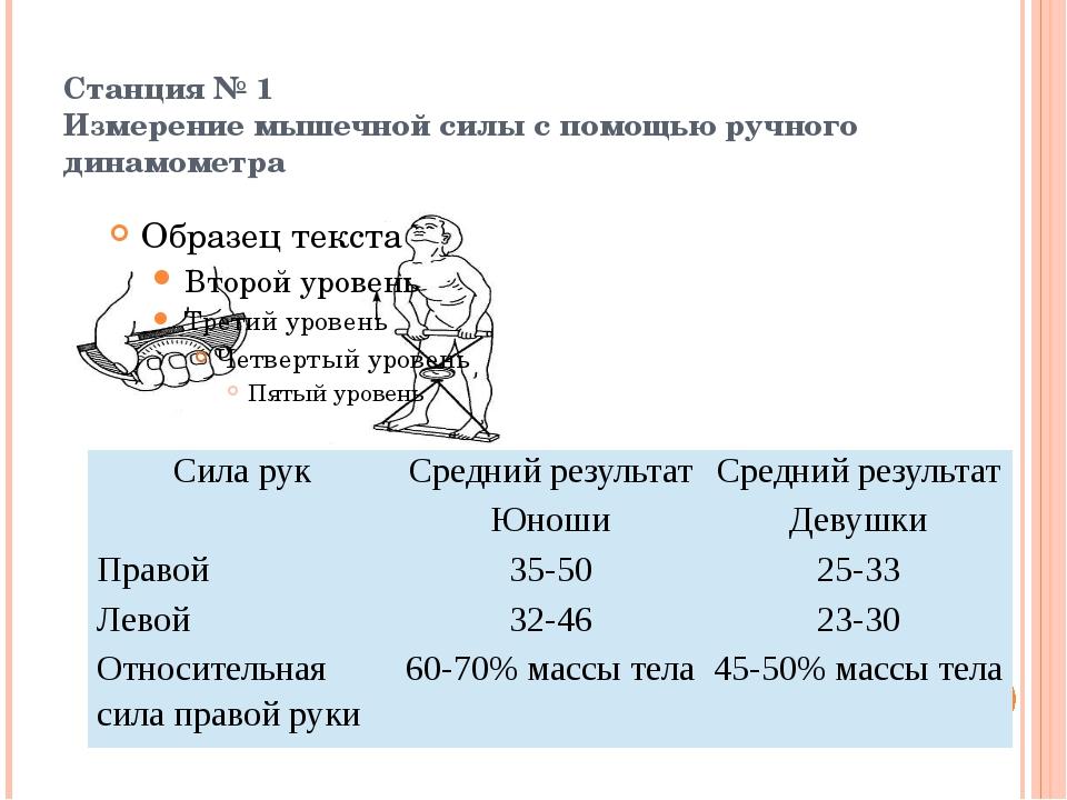 Станция № 1 Измерение мышечной силы с помощью ручного динамометра  Сила ру...