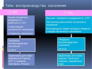 Схематическая диаграмма «Типы воспроизводства населения» Первый тип. «Демогра