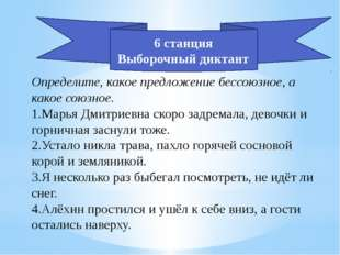 Определите, какое предложение бессоюзное, а какое союзное. 1.Марья Дмитриевна