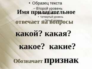 Имя прилагательное отвечает на вопросы какой? какая? какое? какие? Обозначае