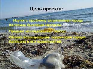 Изучить проблему загрязнения города Калязина бытовым мусором. Предмет исслед