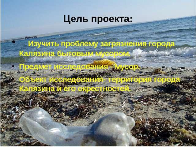 Изучить проблему загрязнения города Калязина бытовым мусором. Предмет исслед...