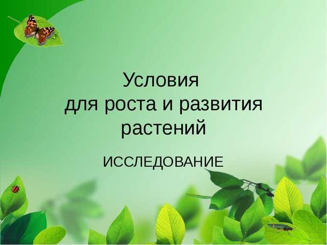 Условия для роста и развития растений ИССЛЕДОВАНИЕ