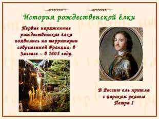 История рождественской ёлки Первые наряженные рождественские ёлки появились