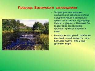 Природа Висимского заповедника Территория заповедника находится на западном с