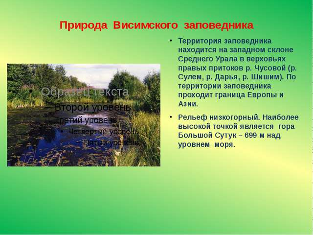 Природа Висимского заповедника Территория заповедника находится на западном с...