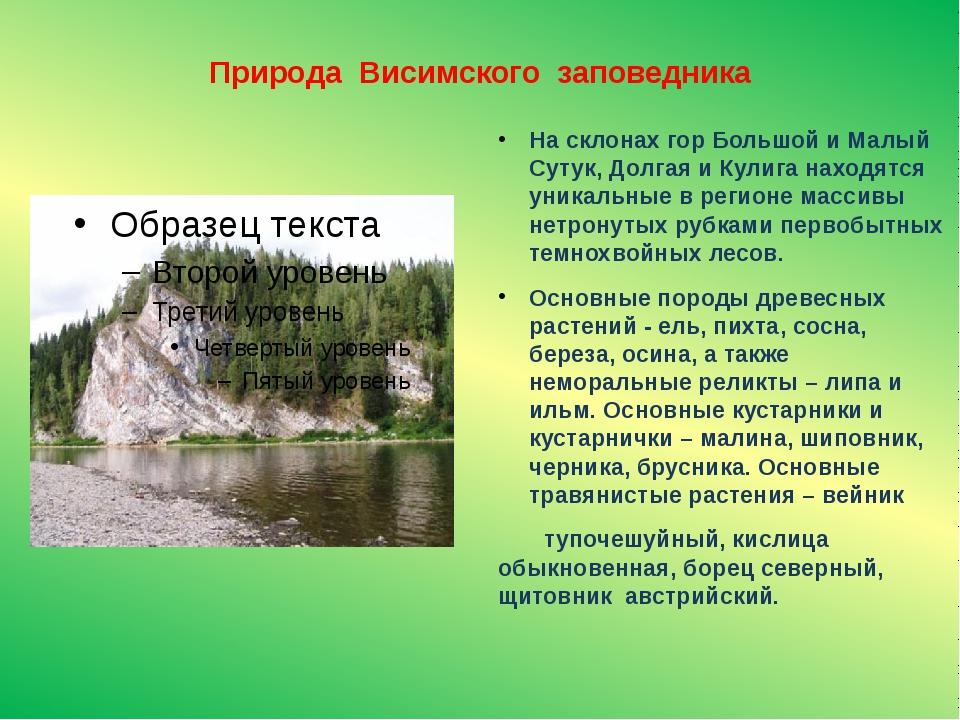 Природа Висимского заповедника На склонах гор Большой и Малый Сутук, Долгая и...