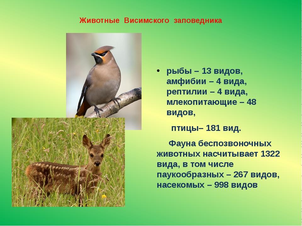 Животные Висимского заповедника рыбы – 13 видов, амфибии – 4 вида, рептилии –...