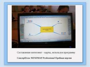 Составление интеллект – карты, используя программу ConceptDraw MINDMAP Profes