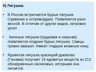 б) Лягушки. В России встречаются Бурые лягушки (травяная и остромордая). Появ