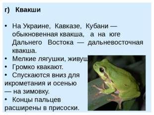 г) Квакши На Украине, Кавказе, Кубани — обыкновенная квакша, а на юге Дальнег