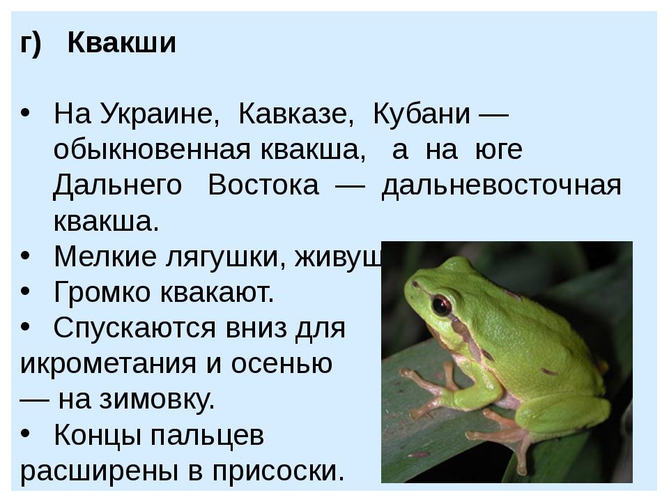 г) Квакши На Украине, Кавказе, Кубани — обыкновенная квакша, а на юге Дальнег...