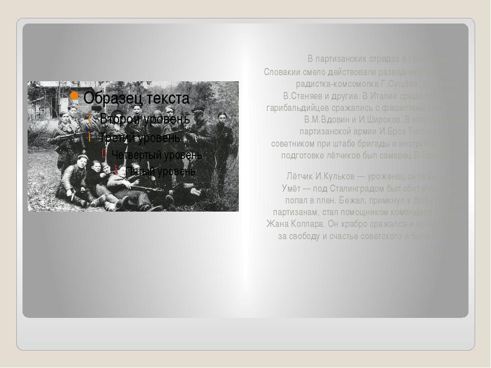 В партизанских отрядах в горах Чехии и Словакии смело действовали разведчики...