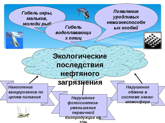 Гибель икры, мальков, молоди рыб Экологические последствия нефтяного загрязн...