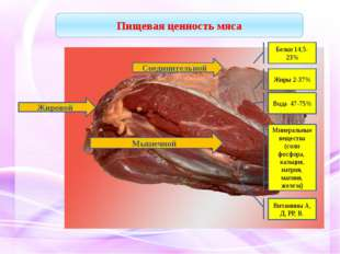 Соединительной Жировой Мышечной Белки 14,5-23% Жиры 2-37% Вода 47-75% Минера