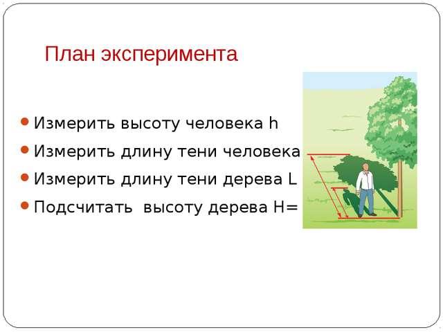 План эксперимента Измерить высоту человека h Измерить длину тени человека l И...