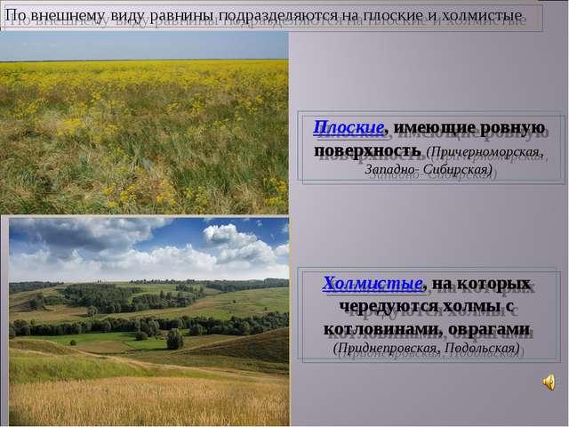 Плоские, имеющие ровную поверхность (Причерноморская, Западно- Сибирская) Хол...