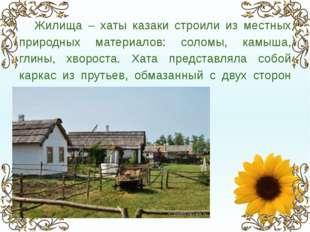 Жилища – хаты казаки строили из местных природных материалов: соломы, камыша