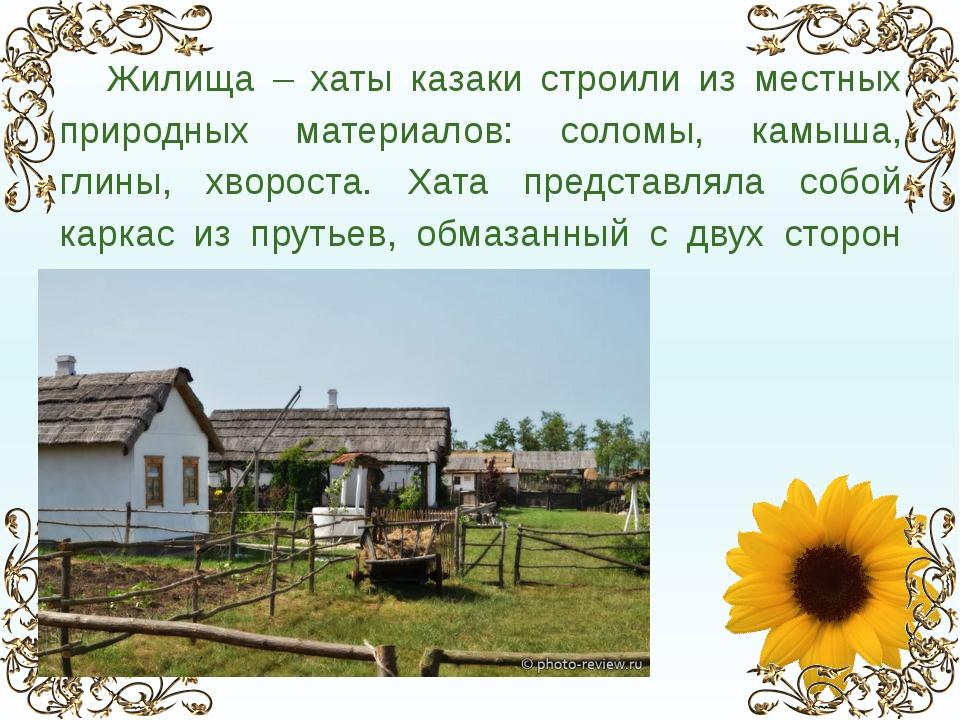 Жилища – хаты казаки строили из местных природных материалов: соломы, камыша...