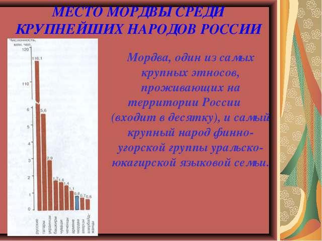 МЕСТО МОРДВЫ СРЕДИ КРУПНЕЙШИХ НАРОДОВ РОССИИ Мордва, один из самых крупных эт...