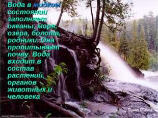 Вода в жидком состоянии заполняет океаны, моря, озёра, болота, родники. Она