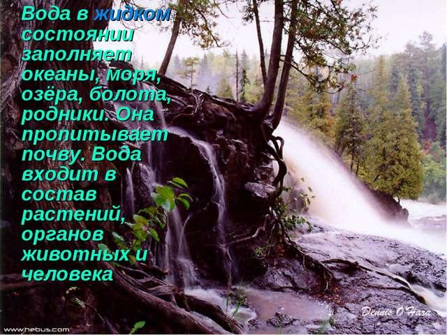 Вода в жидком состоянии заполняет океаны, моря, озёра, болота, родники. Она...