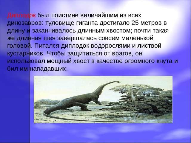 Диплодок был поистине величайшим из всех динозавров: туловище гиганта достига...