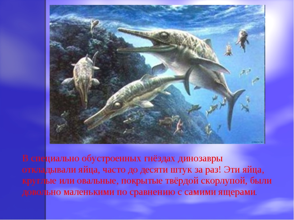 В специально обустроенных гнёздах динозавры откладывали яйца, часто до десяти...