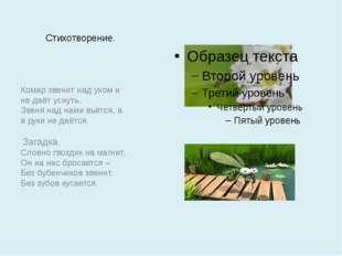 Стихотворение. Комар звенит над ухом и не даёт уснуть. Звеня над нами вьётся,