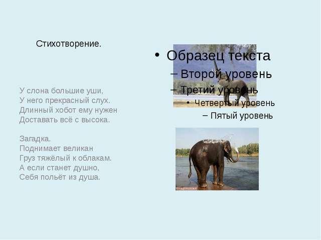 Стихотворение. У слона большие уши, У него прекрасный слух. Длинный хобот ему...