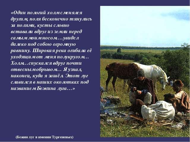 (Бежин луг в имении Тургеневых) «Один пологий холм сменялся другим, поля беск...