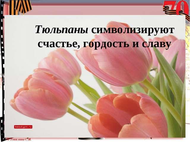Тюльпаны символизируют счастье, гордость и славу © Топилина С.Н.