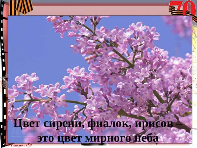 Цвет сирени, фиалок, ирисов – это цвет мирного неба © Топилина С.Н.