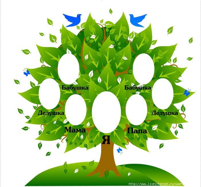 Как своими руками нарисовать родословное дерево