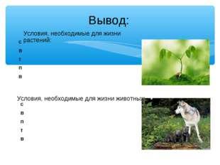 Условия, необходимые для жизни растений: Условия, необходимые для жизни живот