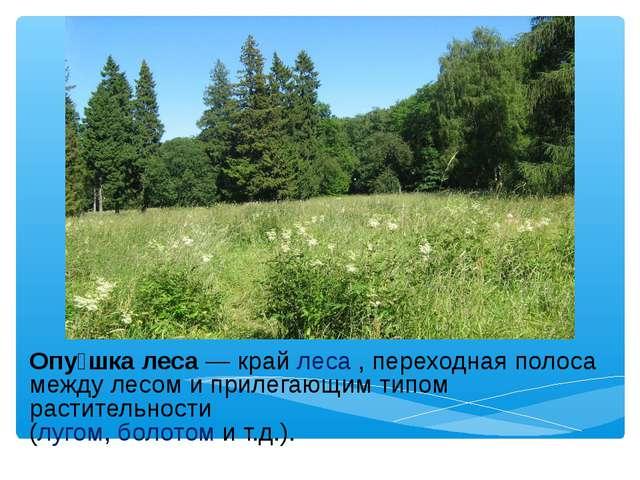 Опу́шка леса— крайлеса, переходная полоса между лесом и прилегающим типом...