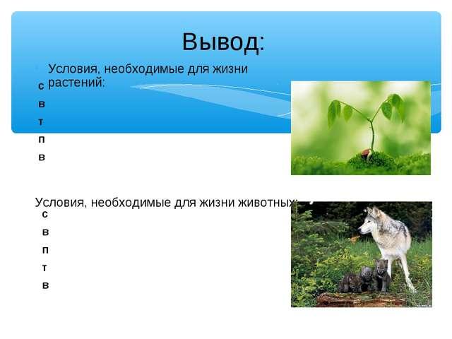 Условия, необходимые для жизни растений: Условия, необходимые для жизни живот...