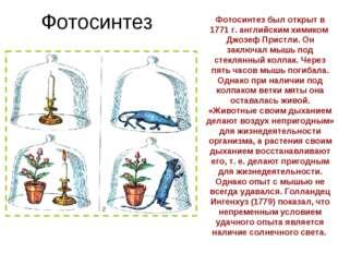 Фотосинтез Фотосинтез был открыт в 1771 г. английским химиком Джозеф Пристли.
