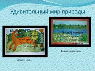 Удивительный мир природы Лесной олень Родная сторонушка