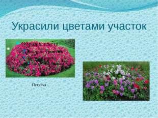 Украсили цветами участок Петунья
