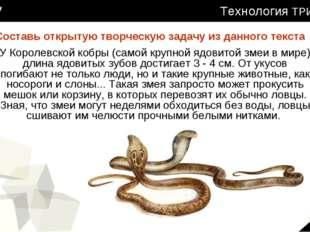 У Королевской кобры (самой крупной ядовитой змеи в мире) длина ядовитых зубов