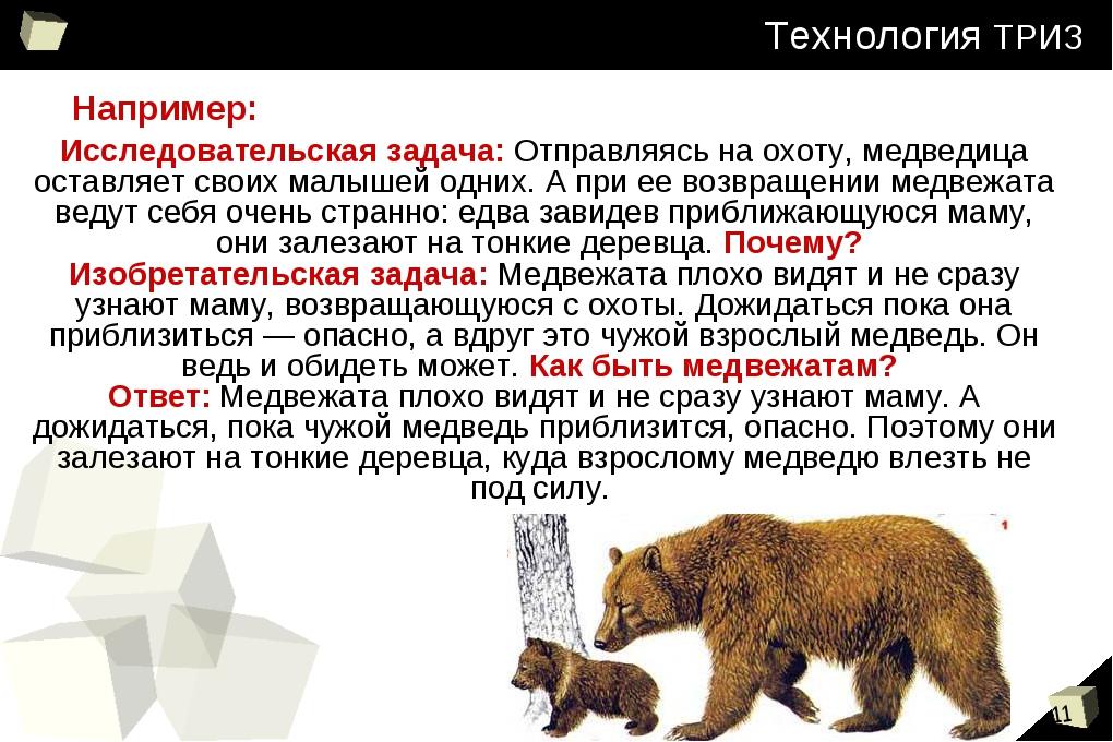 Технология ТРИЗ Исследовательская задача: Отправляясь на охоту, медведица ост...
